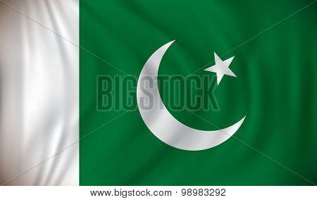 Flag of Pakistan - vector illustration
