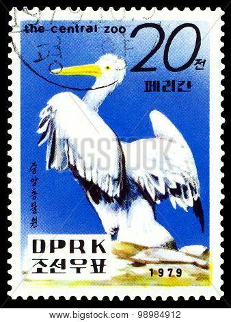 Vintage  Postage Stamp.   Pelican.