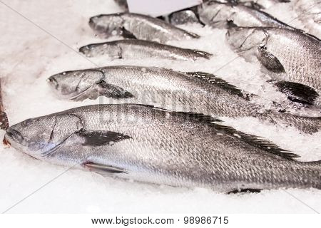 Fishes On The Market