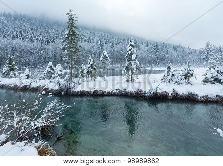 Small Winter Stream With Snowy Trees.