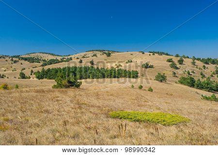 Beautiful autumnal landscape on Ai-Petri mountain tableland