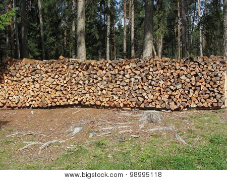 Pile Of Firewood With Forest Background . Fie Allo Scilliar, South Tyrol, Italy