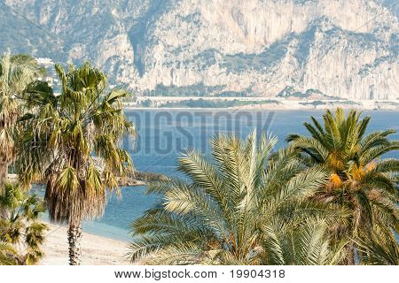 Tropical Beach In French Riviera