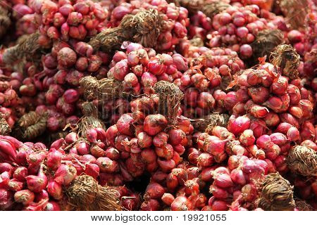 Red Onion Bundle On The Market