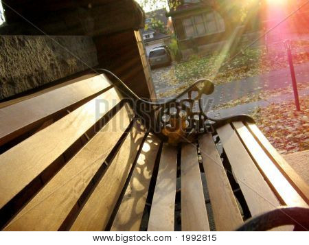Autumnbench