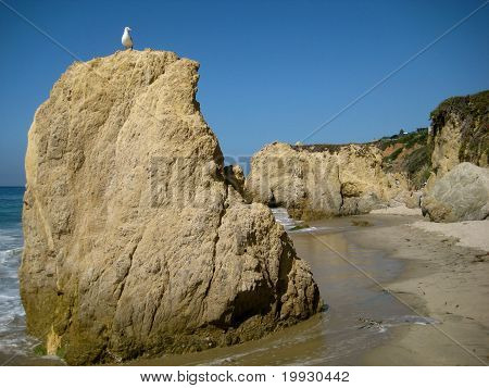 Seagull Watching Over El Matador State Beach