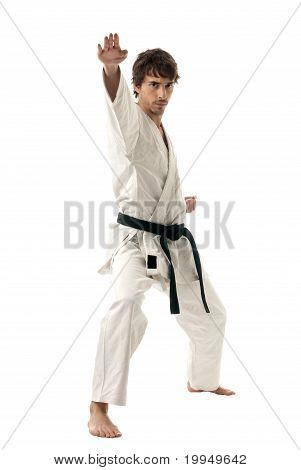 Karate Male Fighter