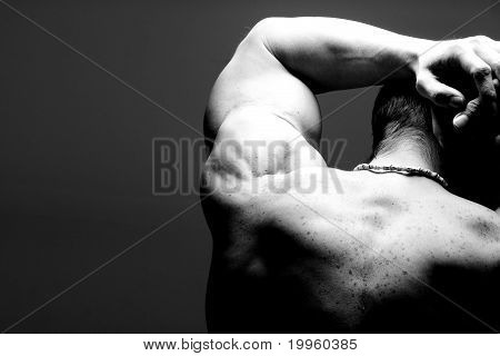 Muscular Male Shoulder Back