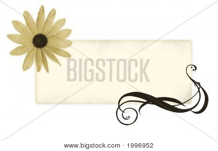 Grundge Banner For Your Text With A Flower And A Swirl