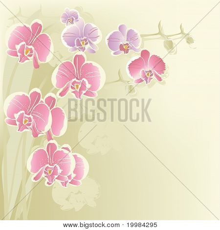 Stylized orchid