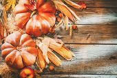 Pumpkin, Squash. Happy Thanksgiving Day Background. Autumn Thanksgiving Pumpkins over wooden backgro poster