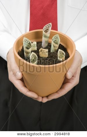 Growing Money In A Pot