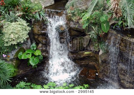 Cascading Tropical Waterfall