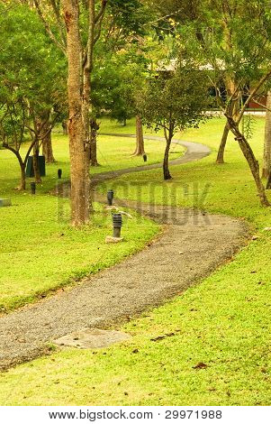 Path in a Peaceful Landscape Garden