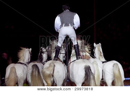 BUDAPEST, HUNGARY - DECEMBER 3: Lorenzo Show at OTP Equitation World Cup, December 3, 2011 in Budapest, Hungary