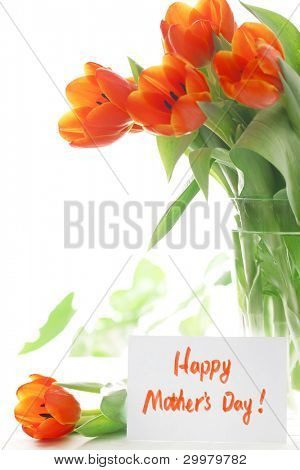 Fresh tulip with gift card, Happy mother's day.