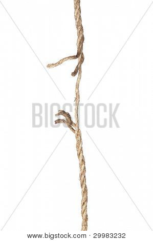A frayed rope isolated on a white background