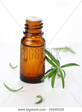 bottle of aromatic essence oil and fresh rosemary