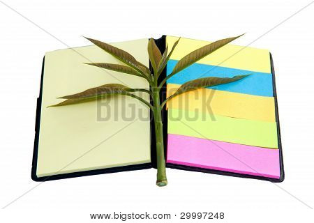 Tree And Note Pad