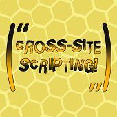 Text Sign Showing Cross Site Scripting. Conceptual Photo Security Vulnerability Mainly Found In Web  poster