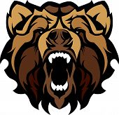 stock photo of grizzly bears  - Graphic Mascot Vector Image of a Black Bear Head - JPG
