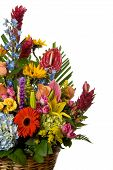 foto of gift basket  - basket full of blooming exotic colorful flowers - JPG