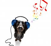 Cool Dj Sausage Dachshund  Dog Listening Or Singing To Music  With Headphones And Mp3 Player, With P poster