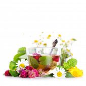 stock photo of aromatic  - cup of herbal tea and fresh flowers on isolated white background - JPG