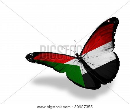 Sudanese Flag Butterfly Flying, Isolated On White Background