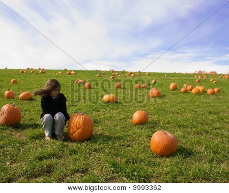 Girl Sitting In A Pumpkin Field