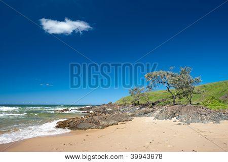 Moonee Beach Area  In Australia