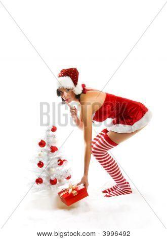 Christmas Woman With A Gift And A Christmas-Tree