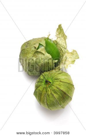 Tomatillo With Husk