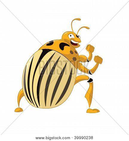 Colorado potato beetle