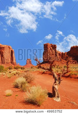 Monument Vally rock formations with lone tree and shrubs in foreground