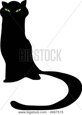 Cat mysterious