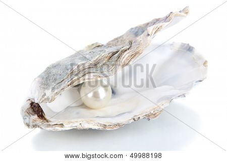 Open oyster with pearl isolated on white