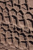 image of stomp  - Tire tracks on a dirt road - JPG