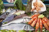 stock photo of shrimp  - Fresh fish and seafood arrangement displayed on the market - JPG