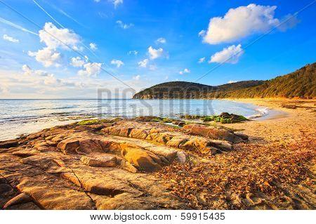 Cala Violina Bay Beach In Maremma, Tuscany. Mediterranean Sea. Italy.