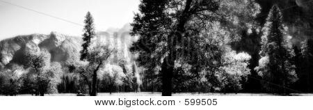 Yosemite Pano In Infrared