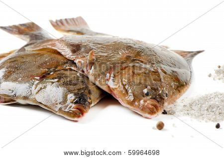 Two Flounder With Salt