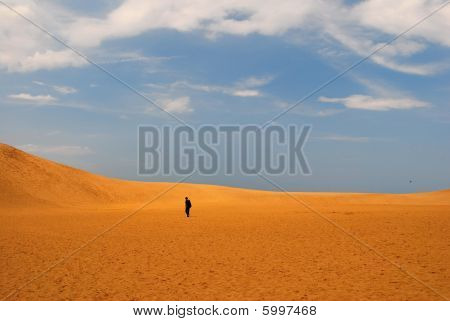 Stranded In A Hot And Dry Desert