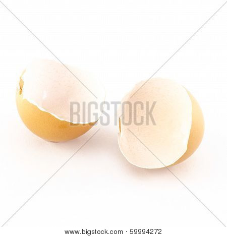 Egg Shell Isolated On White