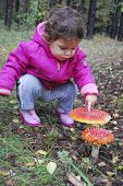 foto of face-fungus  - Little girl in the forest fly agaric finger touches - JPG