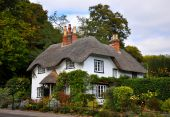 image of english cottage garden  - Old thatched traditional english cottage with green trees behind - JPG