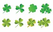 picture of shamrock  - vector green shamrock collection on white background - JPG