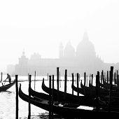stock photo of gondolier  - Romantic Italian city of Venice  - JPG