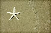 Starfish an waves on summer sunny beach.