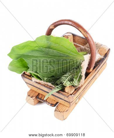 Medicinal herbs in wooden basket isolated on white